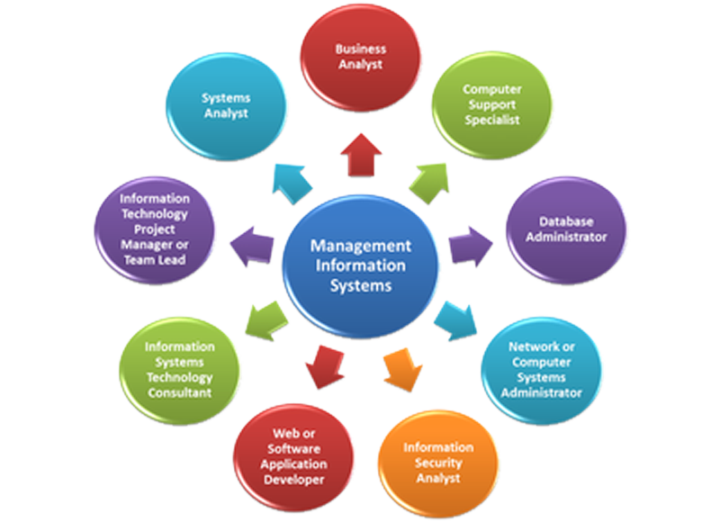 Management Information System Consultancy Management